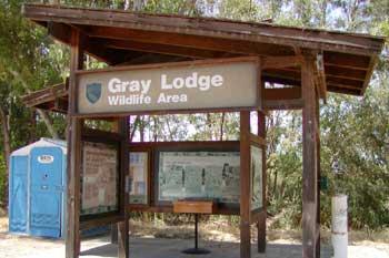 greylodge-1